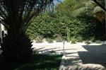 Saint-Laurent-du-Var, 06, jardin cactus
